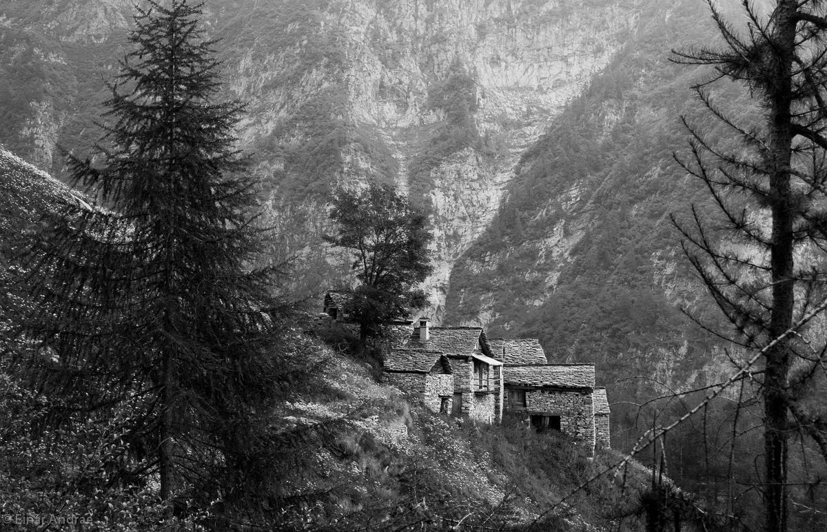 Die Alpe Lareccia